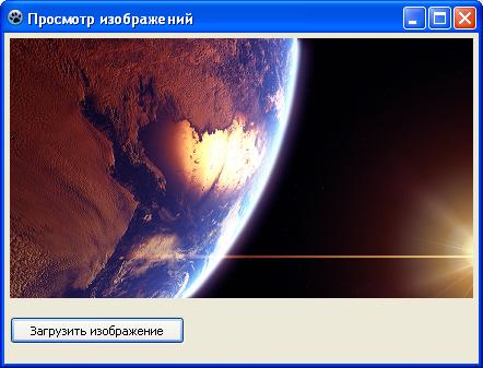 Программа MyImageBrowser с загруженным изображением и уменьшенным размером