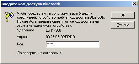 Окно ввода кода безопасности