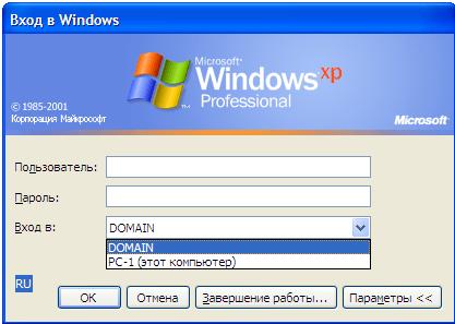 Окно выбора вариантов входа в Windows