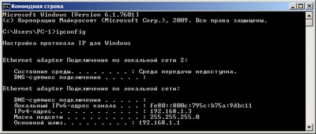 Здесь мы видим IP в двух версиях: IPv4 и IPv6
